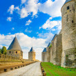 Carcassonne Cite, medieval fortified city on sunset. Unesco site, France — Stock Photo