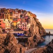 Manarola village, rocks and sea at sunset. Cinque Terre, Italy — Stock Photo #29751365