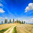 Tuscany, farmland, cypress trees and white road. Siena, Val d Orcia, Italy. — Stock Photo
