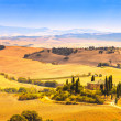 Tuscany, farmland and cypress trees, green fields. San Quirico Orcia, Italy. — Стоковая фотография
