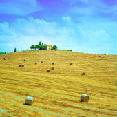 Tuscany, farmland on hill top, hay rolls and harvested green fields. Val d Orcia, Italy. — Stock Photo