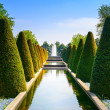 Garden in Keukenhof, conical hedges lines, water pool and fountain. Netherlands — Stock Photo