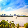Tokyo sunset Skyline with Rainbow Bridge and bay from Odaiba. Japan — Stock Photo