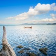 Small wooden boat and tree trunk in a sea bay. Punta Ala, Italy — Stock Photo