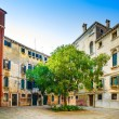 Venice cityscape, tree and buildings in a square. Italy. — Stock Photo