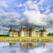 Chateau de Chambord, Unesco medieval french castle and reflection. Loire, France — Stock Photo #36302991