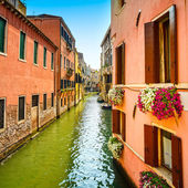 Venice cityscape, Cannaregio water canal, flowers and boats. Ita — Stock fotografie