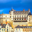 Chateau de Amboise medieval castle, Leonardo Da Vinci tomb. Loir — Stock Photo