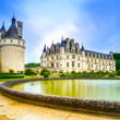 Chateau de Chenonceau Unesco medieval french castle and pool gar — Stock Photo #43337493
