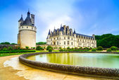Chateau de Chenonceau Unesco medieval french castle and pool gar — Foto de Stock
