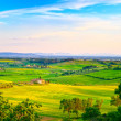 Maremma, rural sunset landscape. Countryside old farm and green — Stock Photo