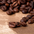 Coffee beans — Stock fotografie
