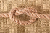 Marine knot — Photo