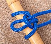 Marine knot — Stock Photo