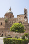 Detail of garden in Palermo Cathedral — Stock Photo