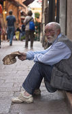 A homeless old man — Stock Photo