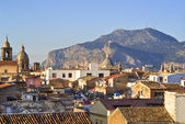 View of Palermo with roofs — Stock Photo