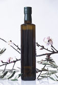 Olive branch and a bottle of olive oil — Stock Photo