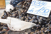 Mussels for sale at the local market — Stock Photo