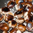Freshly roasting chestnut  — Stock Photo