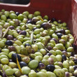 Olives in box — Stockfoto #39772663
