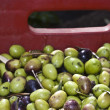 Olives in box. — Stockfoto #39773167