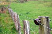 Cerca elétrica — Fotografia Stock