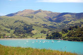 Yachts in Akaroa bay — Stock Photo