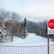 Stock Photo: Ski sign way cosed