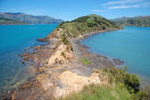Onawe peninsula New Zealand — Stock Photo
