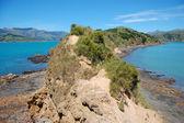 Rocosa península nueva zelanda — Foto de Stock