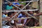 Dzieci za płot bambusowy — Zdjęcie stockowe