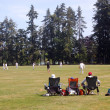 Plays cricket in park — Stock Photo