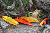 Red orange kayak store place sea side — Stock Photo