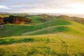 Green hills rural area — Stock Photo