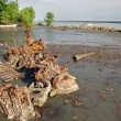 Abandoned rusty metal boat parts at low tide ocecoast — Stock Photo #41372243
