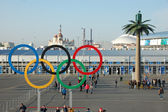 Olympic rings near entrance to park at Sochi 2014 XXII Winter Ol — Stock Photo