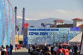 Parco olimpico al xxii invernali olimpiadi sochi 2014 — Foto Stock