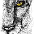 Hand drawn Sketch of a lion looking intently at the camera — Stock Vector