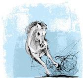 Schizzo del cavallo bianco in esecuzione — Vettoriale Stock