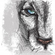 Hand drawn Sketch of lion looking intently at camera — Stockvector #23419878