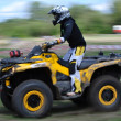 Russian championship trophy raid among SUVs, ATVs and motorcycles - Foto Stock