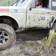 Russian championship trophy raid among SUVs, ATVs and motorcycles - Stock Photo