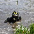 Stock Photo: ATV drowned