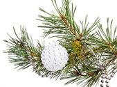 Jedle větev stromu s bílé vánoční koule — Stock fotografie
