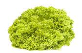 Fresh green iceberg salad isolated on white background — Stock Photo