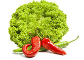 Iceberg salad and green with red chili pepper — Stock Photo
