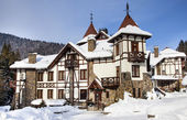 Winter castle in Carpathians — Stock Photo