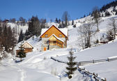 Wooden chalet in winter Carpathian mountains — Stockfoto