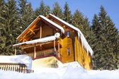 Wooden chalet in winter mountain in Carpathians — Stock Photo